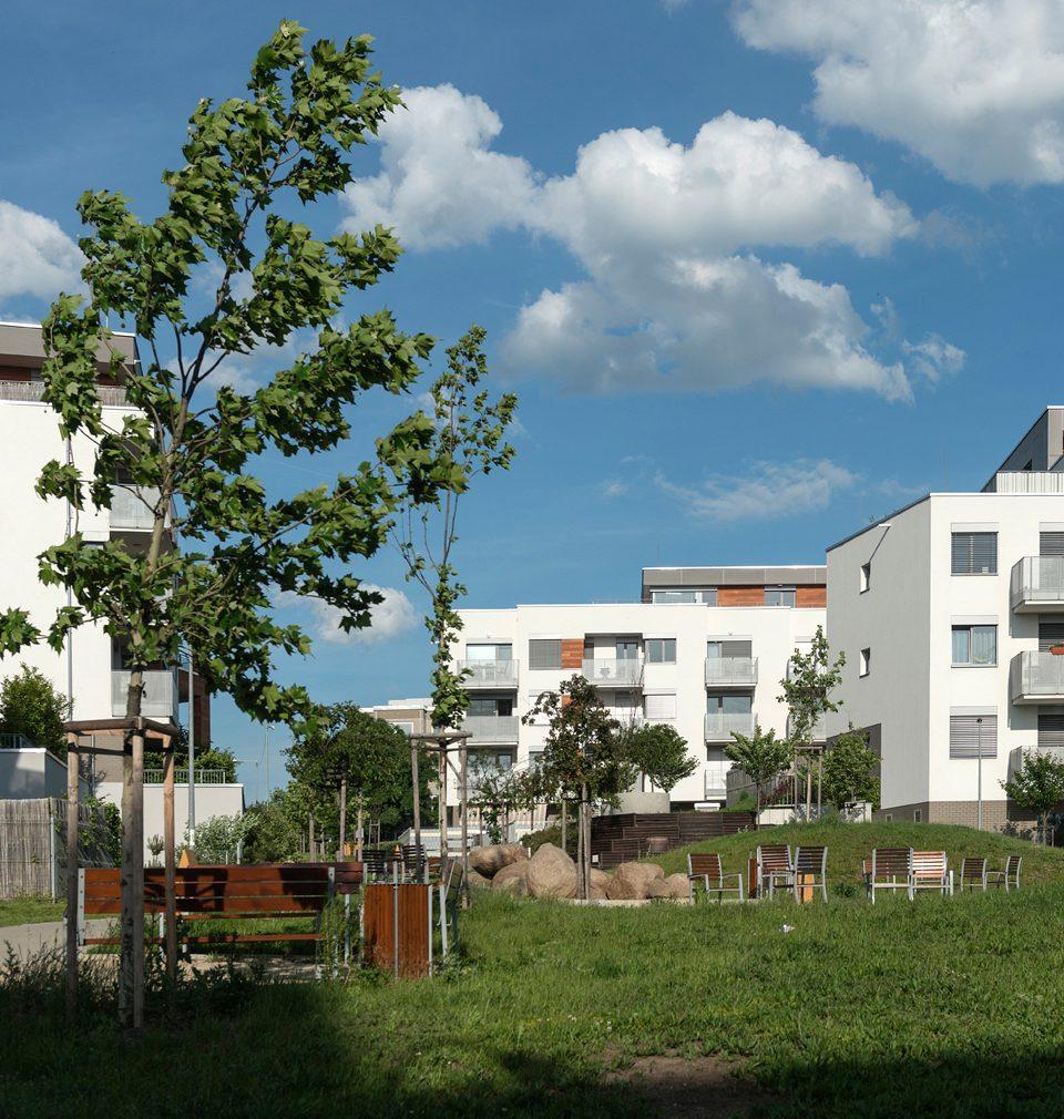 Od výstavby rezidenčního parku Hloubětín uplynulo už téměř 10 let, ale stále nám nepřestává dělat radost